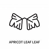 Apricot Leaf Leaf Icon Isolated On White Background. Apricot Leaf Leaf Icon Simple Sign. Apricot Lea poster