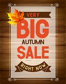 Advertisement about the autumn sale. Vector.
