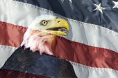image of superimpose  - Head of eagle superimposed into flag can be used as background with eagle scout or other photo - JPG