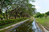 stock photo of langkawi  - Tropical park in center of Langkawi city - JPG