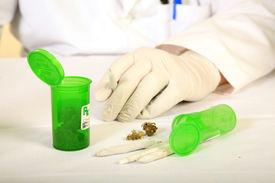 stock photo of loco  - Medical Marijuana Buds - JPG