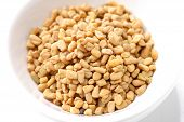 picture of fenugreek  - close up shot of fresh spice of fenugreek - JPG