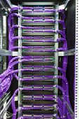 picture of utp  - Large group of lilac utp Internet cables in rack data center - JPG