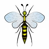 pic of bumble bee  - Yellow Bumble  Bee Cartoon Insect On White - JPG