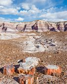 foto of sand gravel  - Petrified wood amidst towering hills with colorful bands of silt sand and gravel in the Blue Mesa area of the Painted Desert - JPG