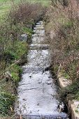 foto of spawn  - Manmade fish ladder built to provide sea run herring a way to spawn in a lake above the ladders - JPG