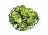 pic of brussels sprouts  - Net full of fresh Brussel Sprouts on a white background - JPG