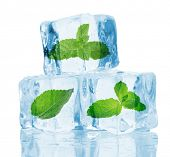 foto of mints  - Ice cubes with mint - JPG