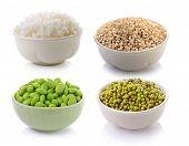 pic of mung beans  - soy beans Rice Job - JPG