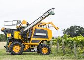 stock photo of harvest  - Grape harvester poised to start harvesting a crop - JPG