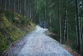 picture of bavarian alps  - People walking along the paths in the wood around Eibsee lake in Bavarian Alps during winter holidays - JPG