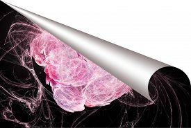 image of plasmatic  - Plasmatic textured paper with bent page corner  - JPG