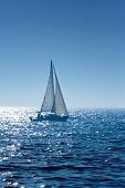 stock photo of sail-boats  - A small  boat sailing on a sunny morning - JPG