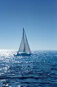 stock photo of sail-boats  - A small  boat sailing on a sunny morning - JPG