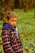 A Perfect Day For Camping. Little Boy Gone Camping In Woods. Little Boy Hiking In Autumn Forest. Enj poster