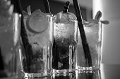 Alcohol Addiction. Cocktail Drinks Served In Glasses With Drinking Straws. Iced Drinks In Cocktail G poster