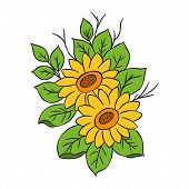 Graphical Sunflower Illustration. Black Flower, Contour Flower, Bloom Flower, Decorative Flower, Iso poster
