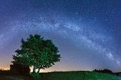 Night Landscape With Colorful Milky Way Stars Over The Tree Silh poster