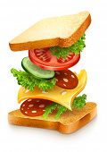 exploded view of sandwich ingredients with cheese, tomatoes, lettuce and sausage. Vector illustratio