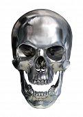 stock photo of cranium  - Metallic skull - JPG