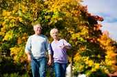 Man and woman, senior couple, having a walk in autumn or fall outdoors, the trees show colorful foli