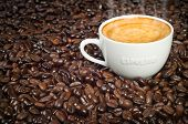 foto of latte coffee  - Cup of Morning Espresso in Dark Roasted Coffee Beans background steaming with frothy crema on top - JPG