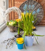 stock photo of cowslip  - Muscari primula decorative buckets and twigs of willow on the window - JPG