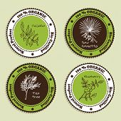stock photo of saw-palmetto  - Set of Natural Organic Product badges - JPG