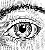 picture of human eye  - Engraving human eye - JPG