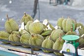 picture of spike  - Durian ripe with green bark and spikes on trolley at street in Thailand - JPG