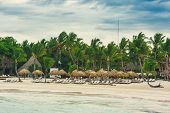 stock photo of mauritius  - Relaxing on remote Tropical Paradise beach in Dominican Republic or Seychelles - JPG