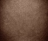 picture of beaver  - Beaver color leather texture background - JPG