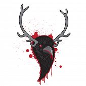 picture of raven  - Bloody Horned Head of Raven Bird - JPG