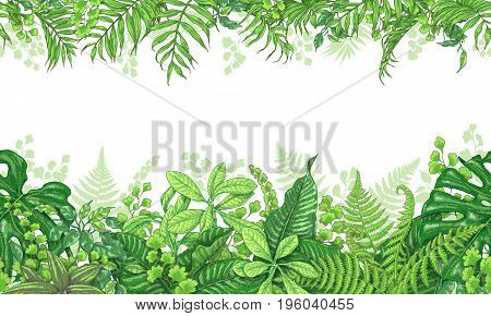 poster of Hand drawn branches and leaves of tropical plants. Vivid line horizontal floral pattern. Green two-sided seamless border. Vector sketch.