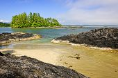 image of pacific rim  - View from Long Beach in Pacific Rim National park Canada - JPG