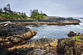 foto of pacific rim  - Rocky ocean shore in Pacific Rim National park Canada - JPG