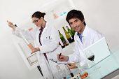 Постер, плакат: женские и мужские вина лаборантов