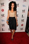 LOS ANGELES - AUG 15:  Sherri Saum at the Superstars for Hope honoring Make-A-Wish at the Beverly Hi