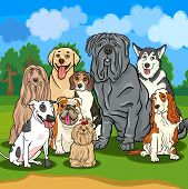 picture of english-mastiff  - Cartoon Illustrations of Funny Purebred Dogs Characters Group - JPG