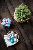 Silver and blue Easter eggs with giftbox and plant near by