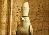 picture of horus  - View of statue of god Horus Egipt - JPG