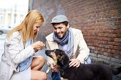 picture of dog clothes  - Portrait of happy young couple in stylish clothes feeding dog outside - JPG