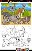 picture of wombat  - Coloring Book or Page Cartoon Illustration of Black and White Funny Marsupials Mammals Animals Characters Group for Children - JPG