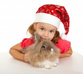 pic of dwarf rabbit  - Child in the New Year hat with a rabbit - JPG