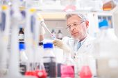 stock photo of scientist  - Life scientist researching in laboratory - JPG