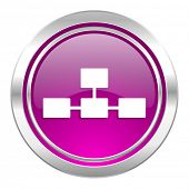 picture of cisco  - database violet icon   - JPG