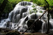 image of blue ridge mountains  - Yellow Branch Falls in Sumter National Forest in Oconee County - JPG