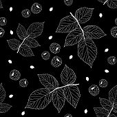 picture of blackberries  - Simple black and white seamless pattern with raspberries - JPG
