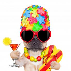 foto of bulldog  - fawn french bulldog dog ready for summer vacation or holidays wearing sunglasses and having a cocktail isolated on white background - JPG