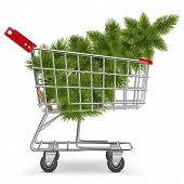 foto of trolley  - Supermarket Trolley with Christmas Tree isolated on white background - JPG